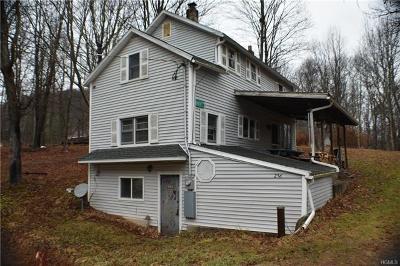 Wurtsboro Single Family Home For Sale: 256 Mount Vernon Road