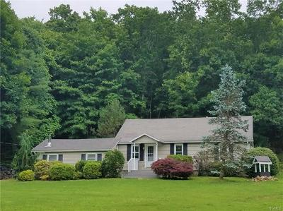 Patterson Single Family Home For Sale: 2190 Route 22