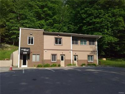 Monroe Commercial For Sale: 600 Route 208 #203