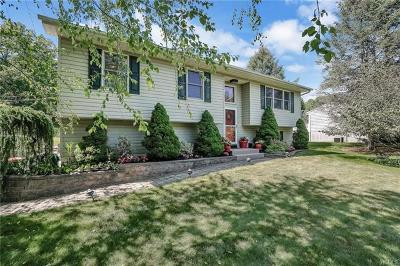 Poughkeepsie Single Family Home For Sale: 72 Daley Road