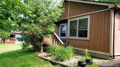 South Fallsburg Single Family Home For Sale: 23 Timber Hill Lane