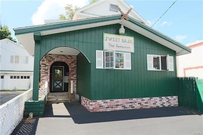 Sullivan County Commercial For Sale: 19 John St. Street