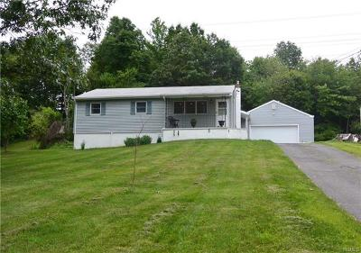 Dutchess County Single Family Home For Sale: 24 Tiger Road