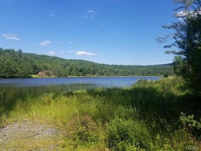 Narrowsburg Residential Lots & Land For Sale: Nys 97