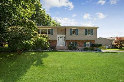 Nanuet Single Family Home For Sale: 43 Jockey Hollow Drive