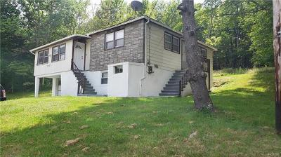 Monticello Single Family Home For Sale: 3427 State Route 42