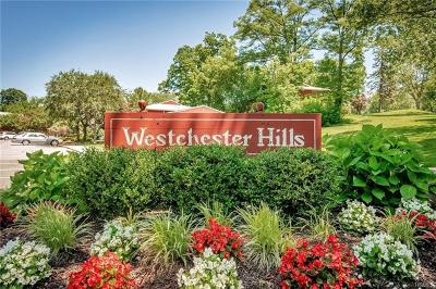Elmsford Condo/Townhouse For Sale: 911 Old Country Road #911