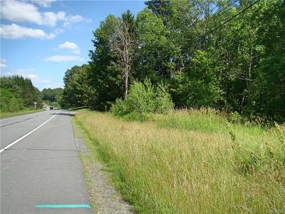 Bethel Residential Lots & Land For Sale: (18.13) Nys Hwy 17b