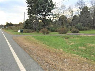 Bethel Residential Lots & Land For Sale: 3969 Nys Hwy 55