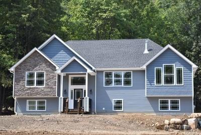Sullivan County Single Family Home For Sale: 603 Roosa Gap Road