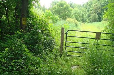 Staatsburg Residential Lots & Land For Sale: 28 Cedar Lane