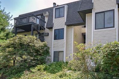 Carmel Condo/Townhouse For Sale: 504 Drew Lane