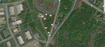 Chester Commercial For Sale: 00 Kings Highway
