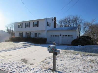 New Windsor Single Family Home For Sale: 8 Cimorelli Drive