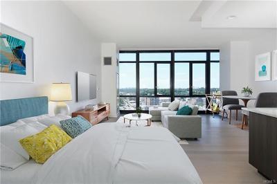 New Rochelle Rental For Rent: 360 Huguenot #910