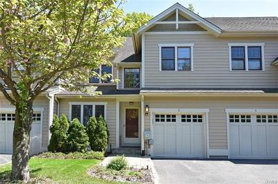Dobbs Ferry Single Family Home For Sale: 3 Landing Drive