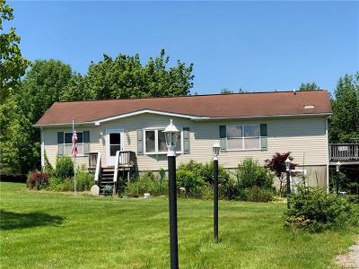 Callicoon Single Family Home For Sale: 418 County Route 164
