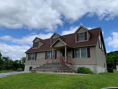Fremont Center Single Family Home For Sale: 93 Friedenstine Road