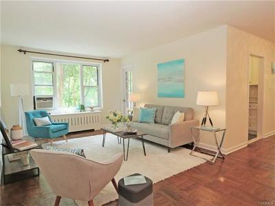 Hastings-On-Hudson Condo/Townhouse For Sale: 555 Broadway #1A