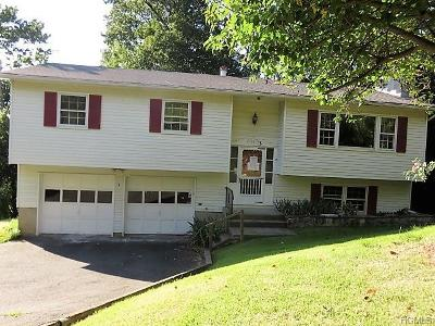 Nyack Single Family Home For Sale: 3 South Delaware Drive