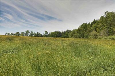 Liberty Residential Lots & Land For Sale: Willi Hill Road