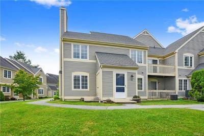 Carmel Condo/Townhouse For Sale: 1104 Nutmeg Drive