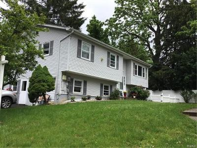 Nyack Single Family Home For Sale: 36 White Avenue