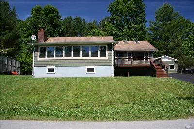 Callicoon Single Family Home For Sale: 468 River Road
