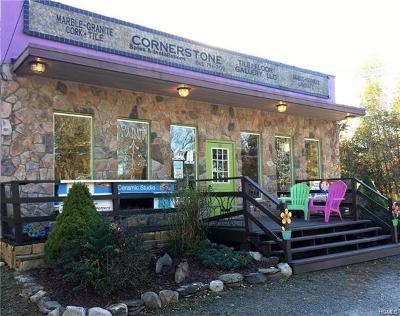 Sullivan County Commercial For Sale: 84 Cimarron Road