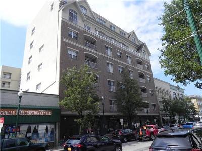 New Rochelle Rental For Rent: 543 Main Street #502