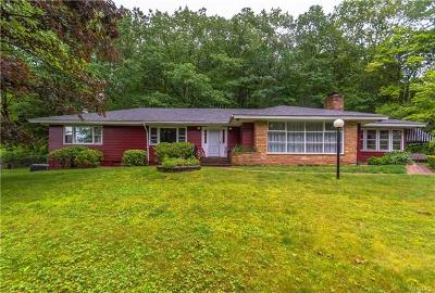 Sullivan County Single Family Home For Sale: 36 Highland Drive