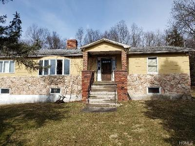 New Hampton Single Family Home For Sale: 175 Carter Road