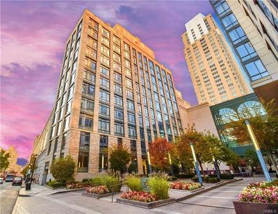 White Plains Condo/Townhouse For Sale: 25 City Place #10C