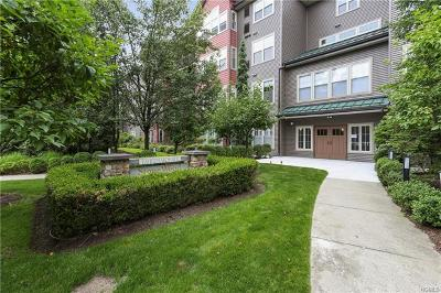 Connecticut Condo/Townhouse For Sale: 100 Richards Avenue #209