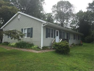 Brewster Single Family Home For Sale: 29 South Road