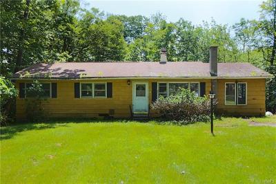 Neversink, Grahamsville, Denning Single Family Home For Sale: 27 Rennison Road