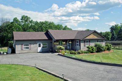 Pine Bush Single Family Home For Sale: 310 Brimstone Hill Road