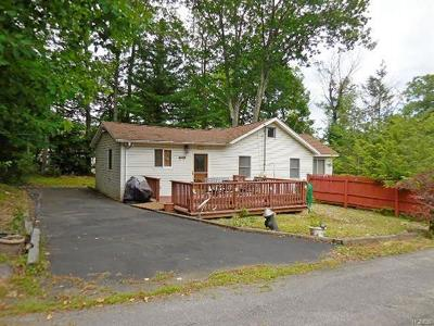 Wurtsboro Single Family Home For Sale: 26 Deer Street East