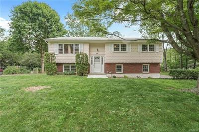 Nanuet Single Family Home For Sale: 28 Rinne Road