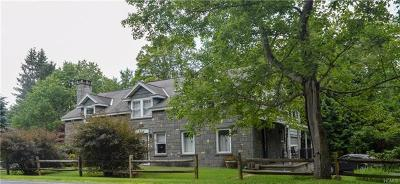 Callicoon Single Family Home For Sale: 915 Callicoon Center Road