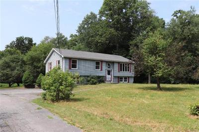 Middletown Single Family Home For Sale: 431 County Route 49