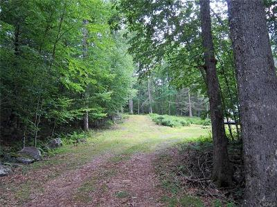 Narrowsburg Residential Lots & Land For Sale: Lot 81 Perry Pond Road