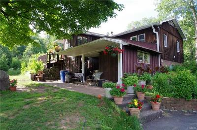 Livingston Manor NY Single Family Home For Sale: $240,000