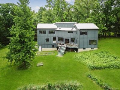 Fishkill Single Family Home For Sale: 11 Rega Road