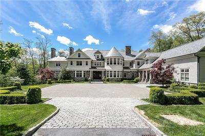 Mount Kisco Single Family Home For Sale: 16 Cerf Lane