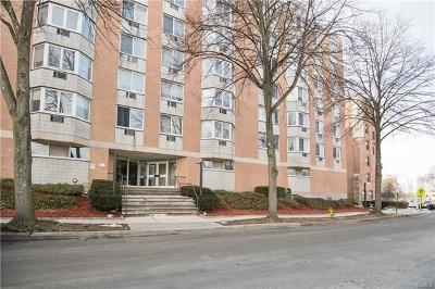 White Plains NY Rental For Rent: $2,800