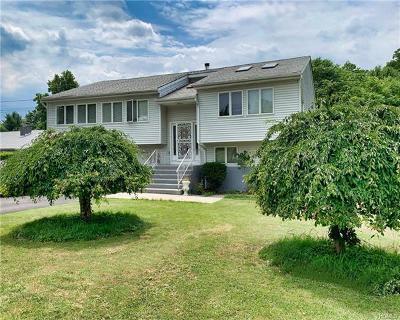 New Windsor Single Family Home For Sale: 298 Quassaick Avenue