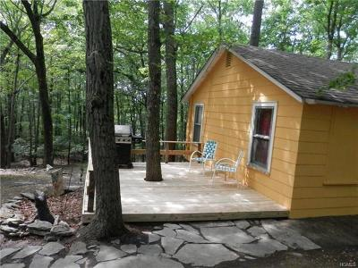 Wurtsboro Single Family Home For Sale: 21 Scott Lane