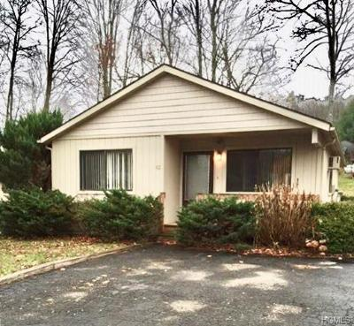 South Fallsburg Single Family Home For Sale: 82 Timber Hill Lane