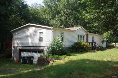 Single Family Home For Sale: 1664 Us Route 209